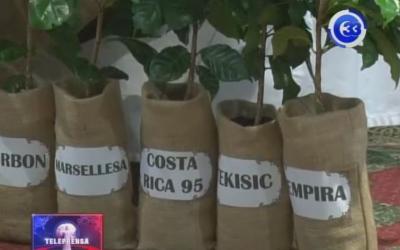 Fórmulas presidenciales se comprometen a impulsar sector cafetalero